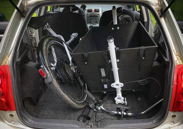 Stork in a hatchback