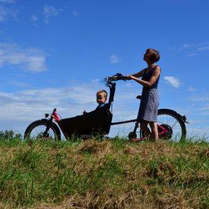 Ebike Stork Cargo Bike SHORT PRO